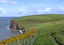 Around St Bees Head - by Jeanne & Ray