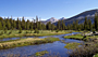 Pacific Crest Trail - by Cd