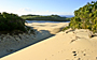 Fraser Island Great Walk: Wongi Sandblow - by Gaz